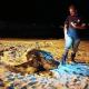 L'incredibile incontro di due pescatori con un'enorme tartaruga