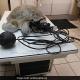 Salvata la tartaruga rinvenuta impalata al largo della Florida
