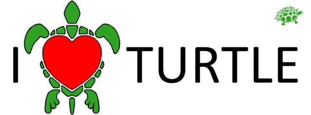 I love turtle tartapedia