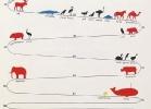 002-ciclo-vitale-animali-tartapedia