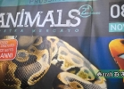 animals-2014-001