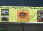 Chelonian Expo 2013 (Arezzo)