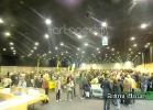 chelonian-expo-arezzo-2014-003