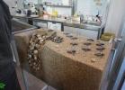inaug-centro-ricerche-tarta-marine-portici-048