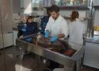 inaug-centro-ricerche-tarta-marine-portici-049