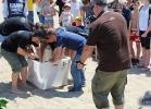 liberazione-caretta-battipaglia-06-06-16-041c