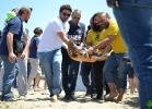 liberazione-caretta-battipaglia-06-06-16-052