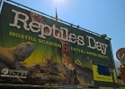 reptiles-day-mag-2016-001