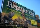 reptiles-day-sett-2015-001