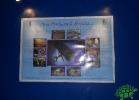 tartapedia-acquario-napoli-0023