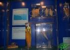 tartapedia-acquario-napoli-0041