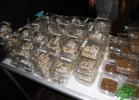 tartapedia-tarta-expo-2011-00001