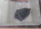 tartapedia-tarta-expo-2011-00030