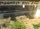 tartapedia-tarta-expo-2011-00069