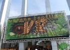 Verona Reptiles 2012 - Domca Esotik e Rino Sauda