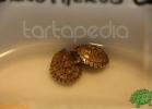 verona-reptiles-2012-fabio-minati-011