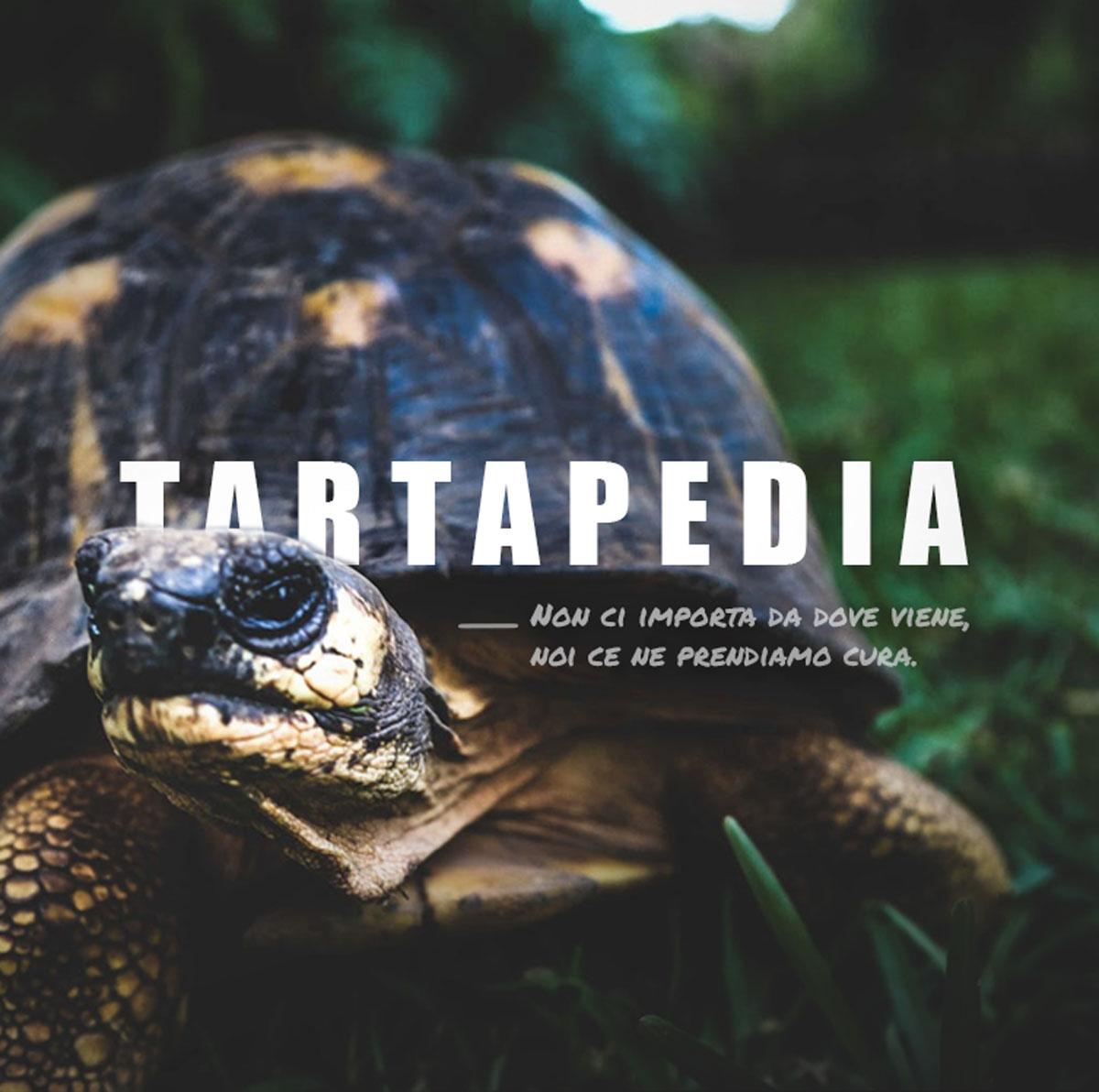 TARTAPEDIA