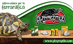 PlayReptile - Sponsor
